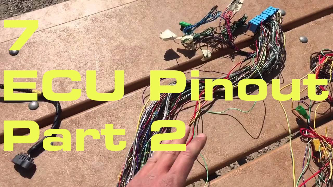7. ECU Pinout 2/2 - Wiring Harness Series We Will Wiring Harness on