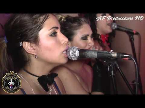 Divas de la Salsa (Que ganas de no verte nunca más) RODATA PRODUCCIONES - AF PRODUCCIONES HD