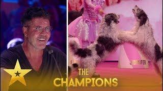 Alexa Lauenburger: 11 Y.O. Dog Trainer Leaves Simon Cowell WOWED!| Britain's Got Talent: Champions