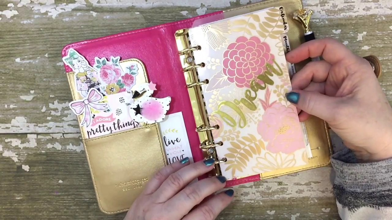 Planner: Feb 2017 Set-Up using DIY Fish Inserts & Annie ...