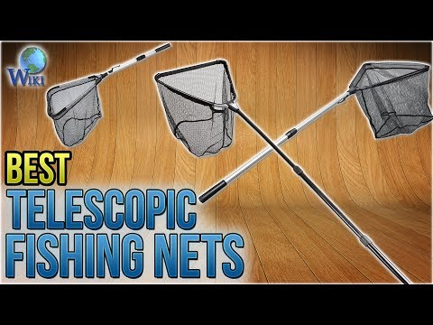 8 Best Telescopic Fishing Nets 2018