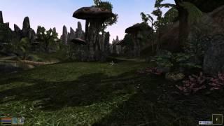 Morrowind Wizard Island Rus Часть 2
