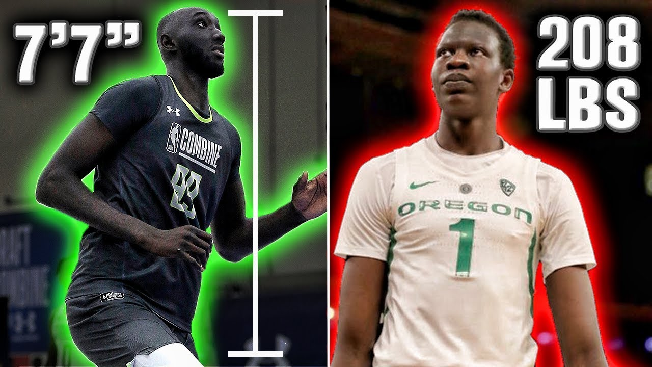 Boston Celtics rookie Tacko Fall's incredible height summed up in one picture