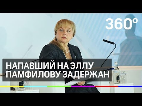 Напавший на главу ЦИК Эллу Памфилову задержан