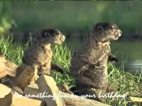 Happy Birthday, Woodchuck Style! - YouTube