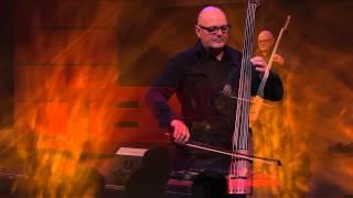Live music act | Mich Gerber | TEDxZurich