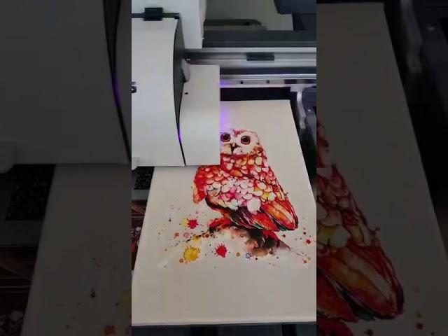 Canvas Baskı