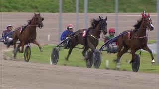 Vidéo de la course PMU PRIX CLINICLOWNS.NL