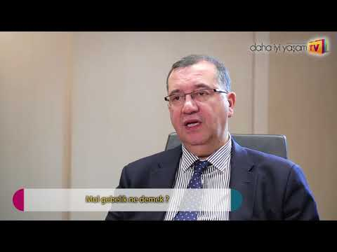 Mol Gebelik Ne Demek? Prof. Dr. Bülent Tıraş