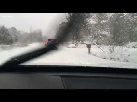 Roads in Clarendon County, SC Hazardous After Heavy Snow