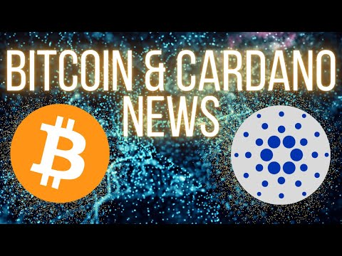 Best Buys in Crypto – Bitcoin Plus Cardano News