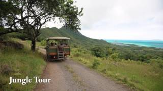 Kualoa Jungle Expedition Tour