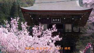 郊外の静かな山寺へ出かけました。 同名の古刹2寺です。