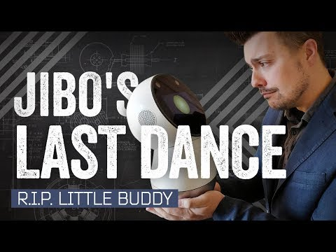 Video thumbnail of Jibo