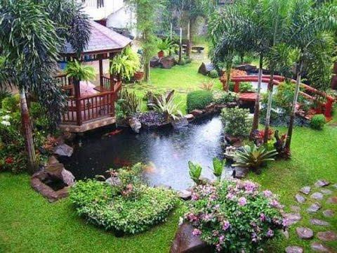mam chewbacca ideas for garden decora tu jardin your landscape