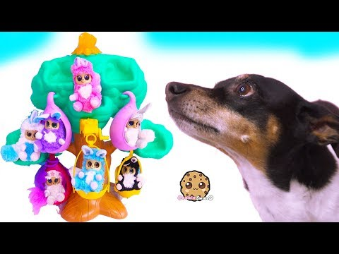 Dog Plays with Fur Babies Dolls - Cookie Swirl C Toy Video