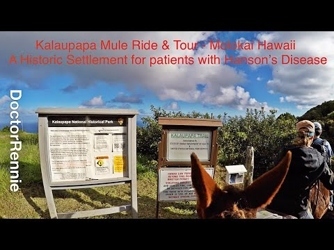 Kalaupapa Molokai Mule Ride and Tour - Historic Settlement for Patients with Hanson