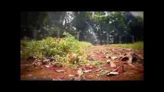 Bersih-bersih Kandang Rusa UI 22/9/2013