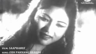 EIDI PAKHANG SHARINI