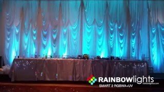 RAINBOW LIGHTS - SMART 2 - changing colors using remote (led uplighting, dj uplights for sale)