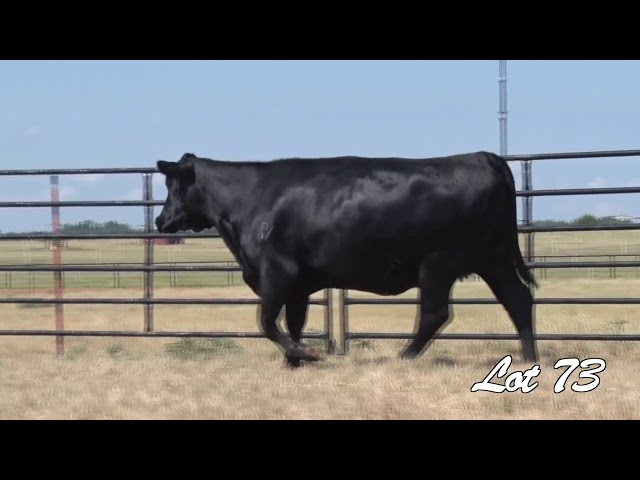 Pollard Farms Lot 73