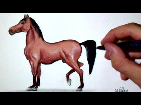 Comment Dessiner Un Cheval Facilement Tutoriel Youtube