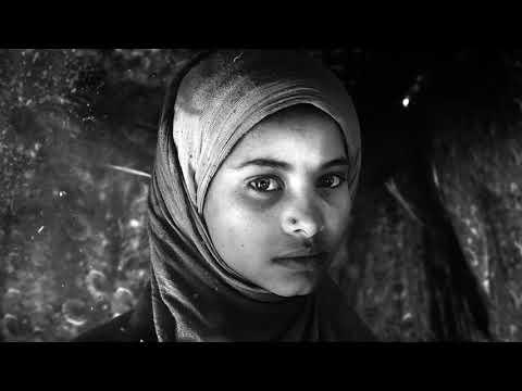 Journée mondiale de l'aide humanitaire 2017