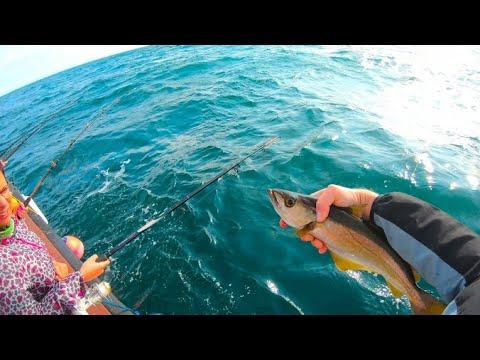 Dunmore East - Deep Sea Fishing - Short Trip