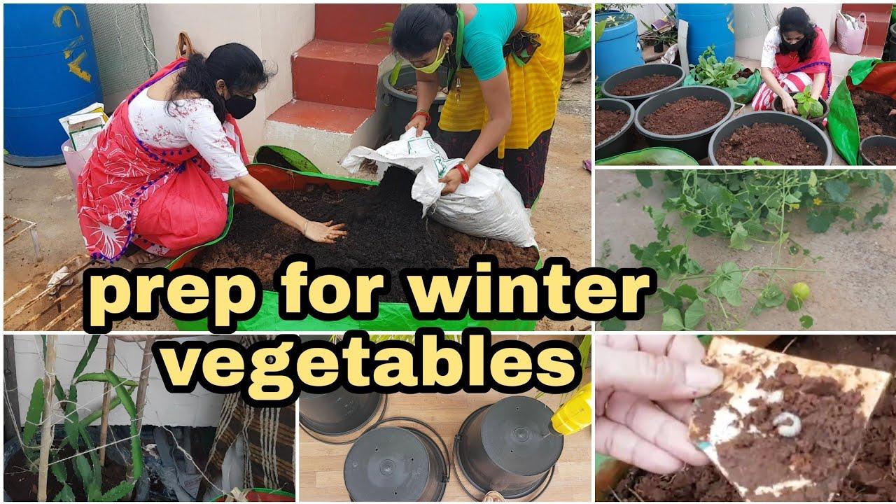 Things to do before starting new batch of seasonal crops/కొత్త పంట వేసే ముందు చేయాల్సిన పనులు #tips