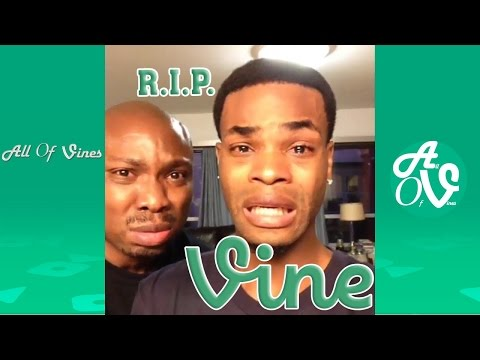 Thumbnail: R.I.P. Vine: Last Funny Vines Ever and Some Viners Paying Their Respect to Vine *FAREWELL VINE*
