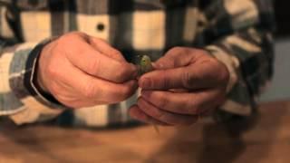 Fishing 101 - Hooking Soft Plastics