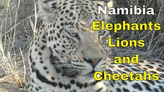 Namibia Self Drive , staying in Lodges - Episode 2 #travel2022