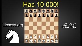 10 000 подписчиков! Игра со зрителями на lichess.org ! Шахматы.