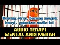 Audio Terapi Mental Anis Merah  Mp3 - Mp4 Download