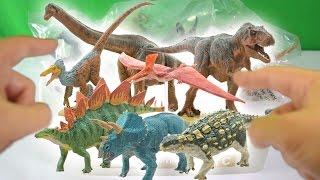 Huge Dinosaur Box Unboxing! Favorite Co.® Ltd - Soft Model Set C, Japanese