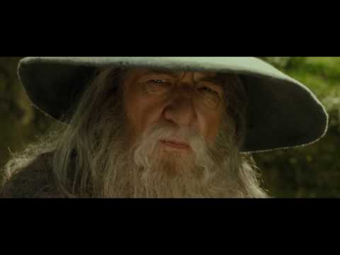 """""""A wizard is never late, nor is he early, he arrives precisely when he means to!"""" -  Gandalf"""