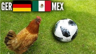 WM Huhn Orakel: Deutschland gegen Mexiko wer wird gewinnen?
