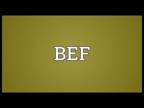 BEF Meaning