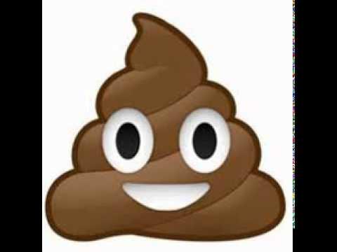 Everybody Poops Song