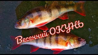 Рыбалка на ОКУНЯ Последний лед 2020