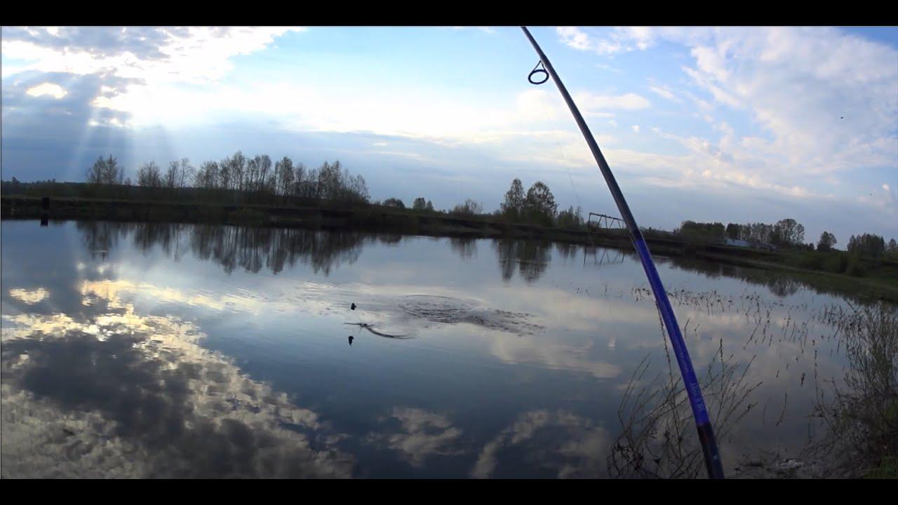 Рыбалка киров платные пруды