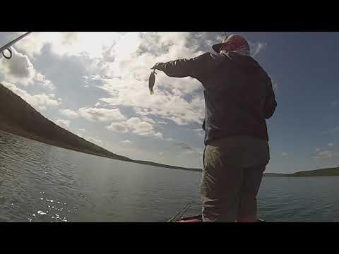 Bass Fishing Round Valley Reservoir NJ 5-25-20