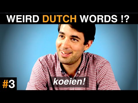 These DUTCH WORDS sound FUNNY in other languages!