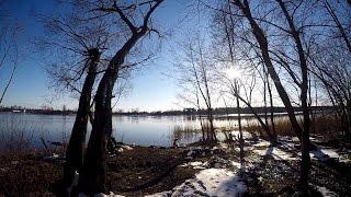 Ловля на донку на реке Волхов | Открытие сезона