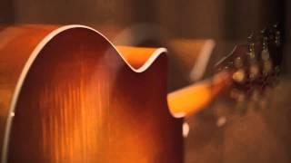 Taylor Guitars 600 Series Guitar