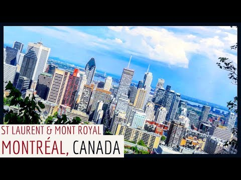 🇨🇦 WHOA MONTRÉAL! You're a STUNNER!   Building on my CONNECTION with CANADA! (PART ONE)