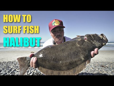 HOW TO CATCH HALIBUT In The SURF | San Diego Fishing (LUCKY CRAFT)