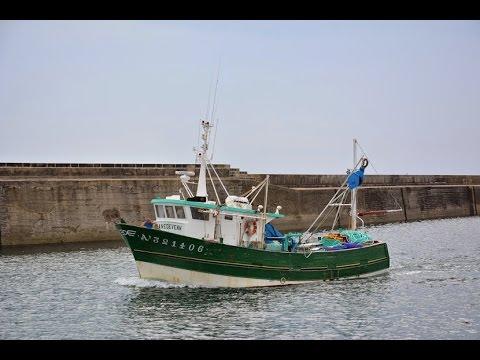 bateau de peche sardinier