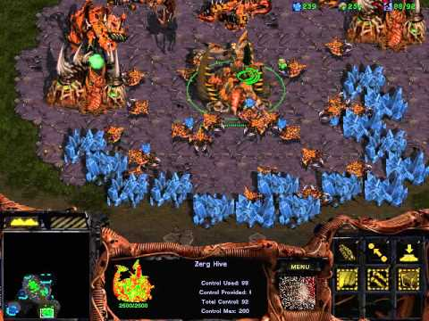Starcraft brood war poker defence download - Gmb poker rally