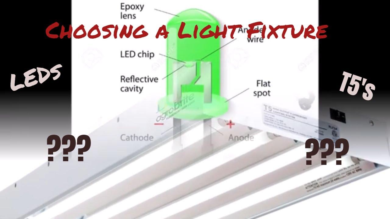 Download Choosing Reef Lighting